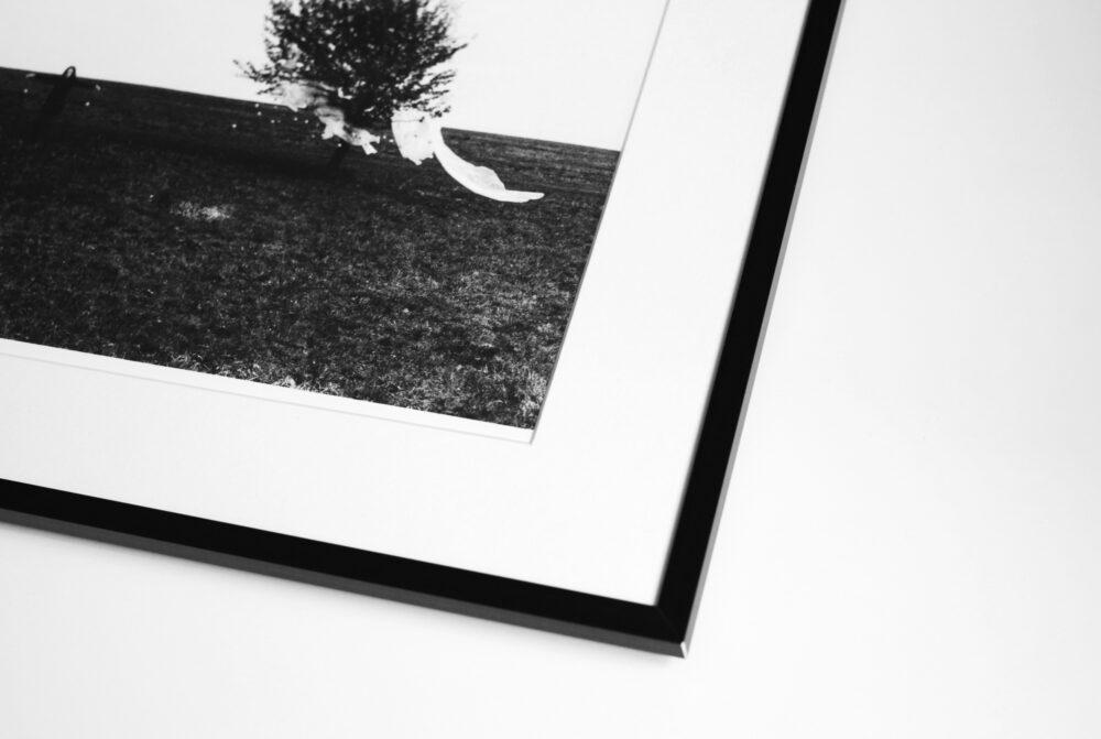LIMITOVANÉ FOTOGRAFIE / LIMITED PHOTOGRAPHS